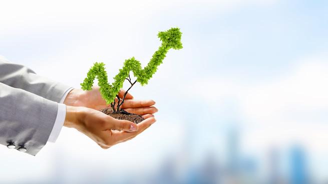 5 negocios rentables que puedes iniciar desde tu casa - Negocios rentables desde casa ...
